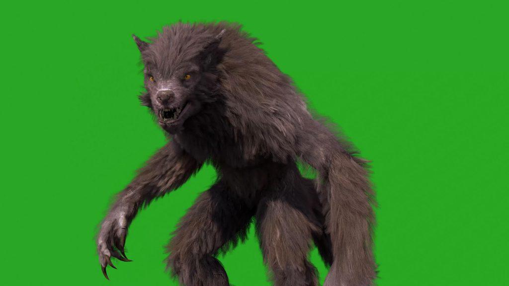 Green Screen Werewolf Real Fur 3D Animation PixelBoom