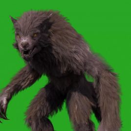 Green Screen Werewolf Real Fur 3D Animation PixelBoom